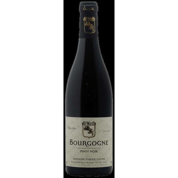 Bourgogne Côte d'Or 2016, - Domaine Coche Bizouard (Pinot Noir)  750 ml